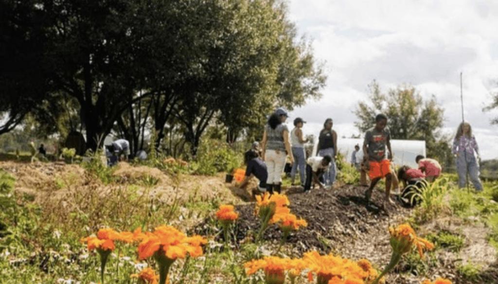 Farmworker Association of Florida Community Garden